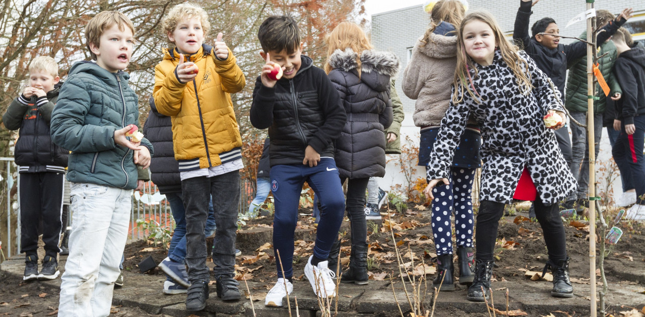 TFF Tiny Food Forest Ede - IVN