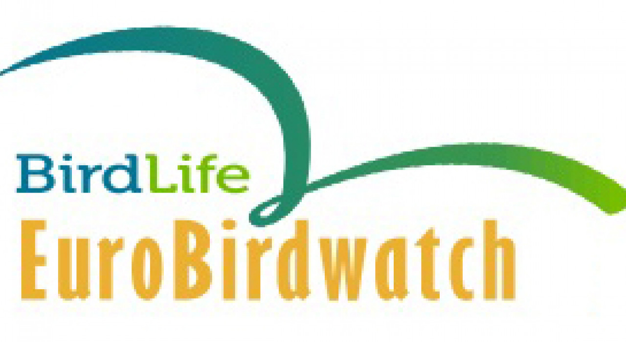 EuroBirdwatch,logo,BirdLife