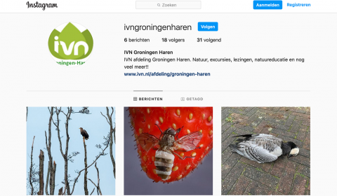IVN Groningen-Haren,start,account,Instagram