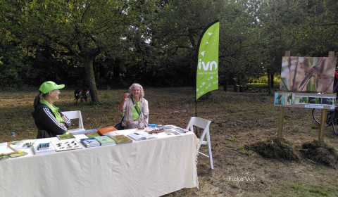 ivn stand